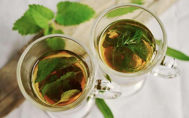 thé vert pour maigrir efficacement